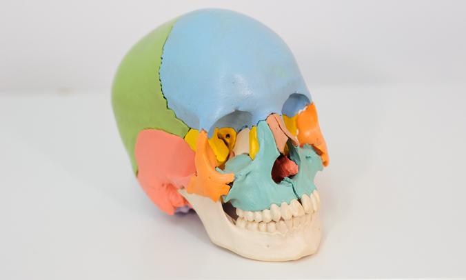 alba-bar-osteopatia-5
